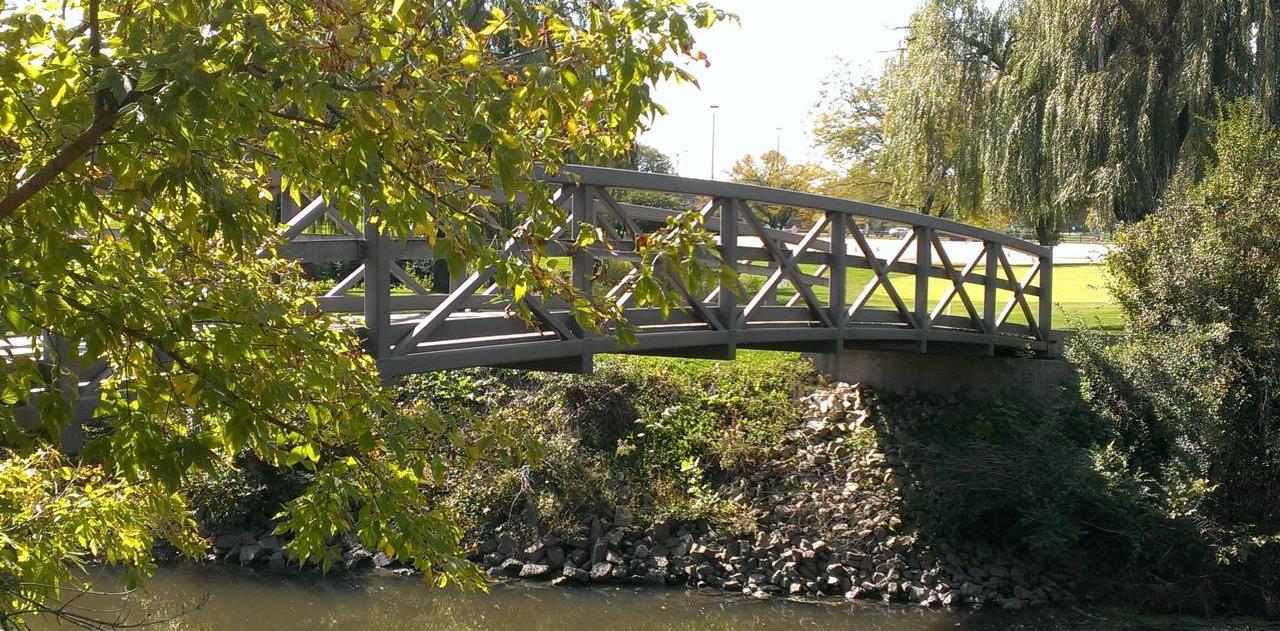 replacement windows wood dale il park bridge